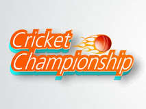 Poster or banner design for Cricket Championship. 3D text Cricket Championship with red ball in fire on grey background, can be used as poster or banner design Stock Images