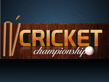 Poster or banner design for Cricket Championship. Stock Photos