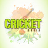 Poster or banner design for Cricket Mania. Stylish text Cricket Mania with bat and ball on color splash background, can be used as poster or banner design Stock Photo