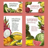 Exotic and tropical fruits on banner or poster. Poster or banner with fruits. Ripe avocado and raw sliced kiwi, apricot and pomegranate, watermelon and melon Royalty Free Stock Photo