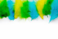 The feathers of birds are green, yellow and blue. White backgrou. Poster for the carnival. Bright festive feathers in the color of the flag of Brazil Stock Photo