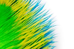 The feathers of birds are green, yellow and blue. White backgrou. Poster for the carnival. Bright festive feathers in the color of the flag of Brazil Royalty Free Stock Images