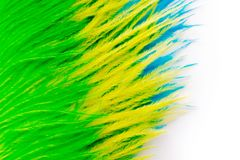 The feathers of birds are green, yellow and blue. White backgrou. Poster for the carnival. Bright festive feathers in the color of the flag of Brazil Stock Photos