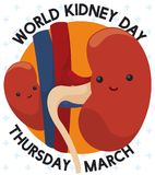 Cute Kidneys Commemorating World Kidney Day in March, Vector Illustration. Poster with cute kidney friends playing hide and seek behind Aorta and Inferior Vena Stock Photo