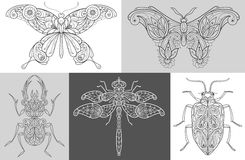 Poster with decorative insects. Vector Image butterflies, beetles, dragonfly. A set of abstract illustrations of insects. Black and white. The concept of vector illustration