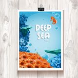 Poster with the deep sea anemones and sea horse on the wood Royalty Free Stock Photography