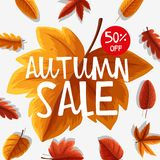 Poster design for autumn sale Stock Photos