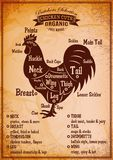 Poster with a detailed diagram of butchering rooster Royalty Free Stock Photos