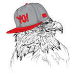 The poster with the eagle  portrait in hip-hop hat. Vector illustration. Royalty Free Stock Photography