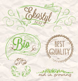 Poster Eco-style. Elements Eco-style related to the environment in a handwritten style Royalty Free Stock Photo