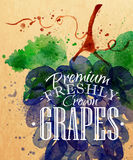 Poster grapes Stock Image