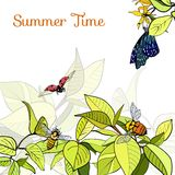 Poster with green leaves, bees and butterfly. Summer time Stock Photography