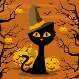 Poster. Halloween. Cat and Pumpkin Stock Photo