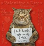 Cat with a poster on his neck. The poster is hanging around cat`s neck. It says ` I hate hearts. I hate candy. I hate this day stock photo