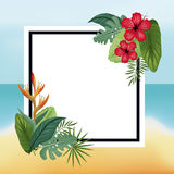 Poster hibiscus and bird of paradise beach leaves palm Stock Image