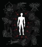 Poster with human silhouette and dangerous insects Royalty Free Stock Photos