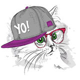 The poster with the image cat portrait in hip-hop hat. Vector illustration. Stock Photo