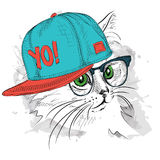 The poster with the image cat portrait in hip-hop hat. Vector illustration. Stock Photos