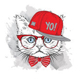 The poster with the image cat portrait in hip-hop hat. Vector illustration. Stock Image