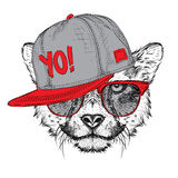 The poster with the image cheetah portrait in hip-hop hat. Vector illustration. Royalty Free Stock Photos