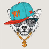 The poster with the image dog portrait in hip-hop hat. Vector illustration. Stock Image