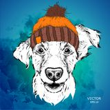 The poster with the image dog portrait in winter hat. Vector illustration. Royalty Free Stock Photos