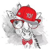 The poster with the image giraffe portrait in hip-hop hat. Vector illustration. Royalty Free Stock Photos