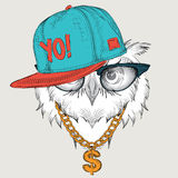 The poster with the image owl portrait in hip-hop hat. Vector illustration. Stock Photo