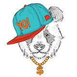 The poster with the image panda portrait in hip-hop hat. Vector illustration. Royalty Free Stock Images