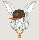 The poster with the image rabbit portrait in hip-hop hat. Vector illustration. Royalty Free Stock Photo