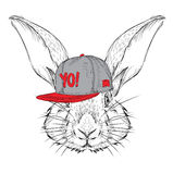 The poster with the image rabbit portrait in hip-hop hat. Vector illustration. Royalty Free Stock Image