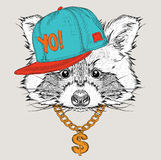 The poster with the image raccoon portrait in hip-hop hat. Vector illustration. Royalty Free Stock Images