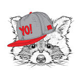 The poster with the image raccoon portrait in hip-hop hat. Vector illustration. Stock Photo