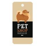 Poster Pet Shop Design label Pomeranian Geometric style Royalty Free Stock Photography