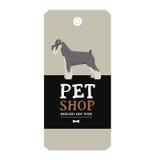 Poster Pet Shop Design label Vector Illustration Schnauzer Stock Photo