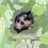 Poster with a polygonal portrait of a cute monkey baby.  Stock Photo