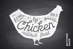 Poster with red chicken silhouette. Lettering Stock Image