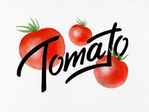 Poster with red watercolor drawing and lettering organic tomato - natural vegetables for postcard, logo Royalty Free Stock Photos