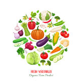 Poster round composition with colorful vegetables Royalty Free Stock Images