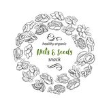 Hand drawn sketch nuts and seeds stock illustration