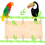 Poster and tropical birds Royalty Free Stock Photo