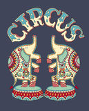 Poster template with inscription CIRCUS and two Stock Photos