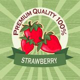 Poster template for strawberry farm.  Fruit label design. Stock Images