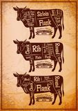 Poster with three different diagram cutting cows. Vector poster with three different diagram cutting cows Royalty Free Stock Photography