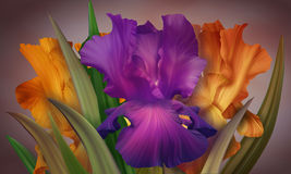 Poster for Woman's Day with original artistic colorful fantasy irises Stock Photo