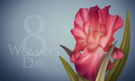Poster for Womans Day with original artistic colorful fantasy red iris Royalty Free Stock Images