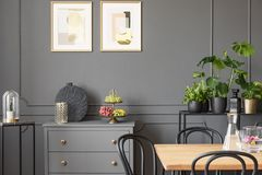 Posters above grey cabinet in dark dining room interior with plants and wooden table. Real photo. Concept stock images