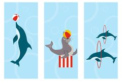 Posters dolphinarium, banners depicting dolphins and fur seals. stock illustration