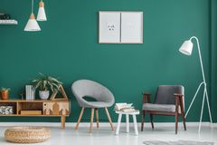 Posters in green living room. White stool between grey armchairs against green wall with posters in living room interior with pouf Royalty Free Stock Photo