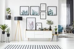 Posters in living room. Botanical posters on the wall in a living room interior with white cabinet, wooden lamp and plants vector illustration